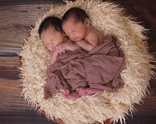 ikiz bebek