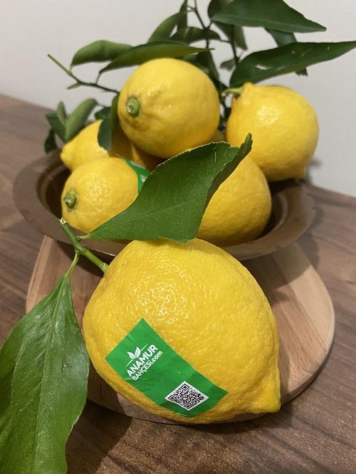 organik parafinsiz limon